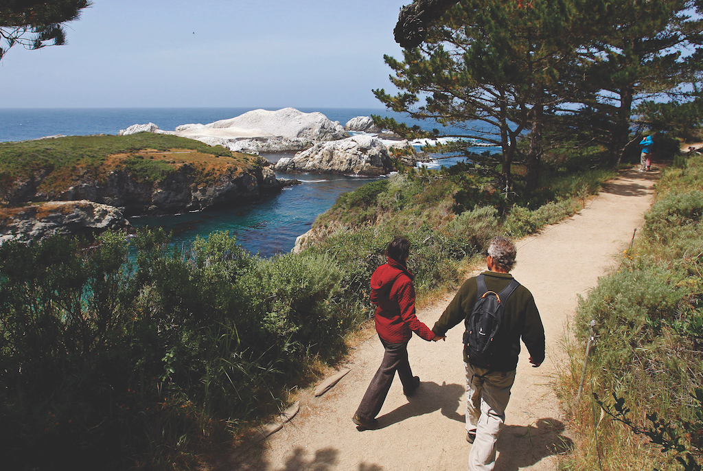 Take a walk on the wild and natural side at Point Lobos. (Photo by  David Royal/ZUMAPRESS/Newscom)