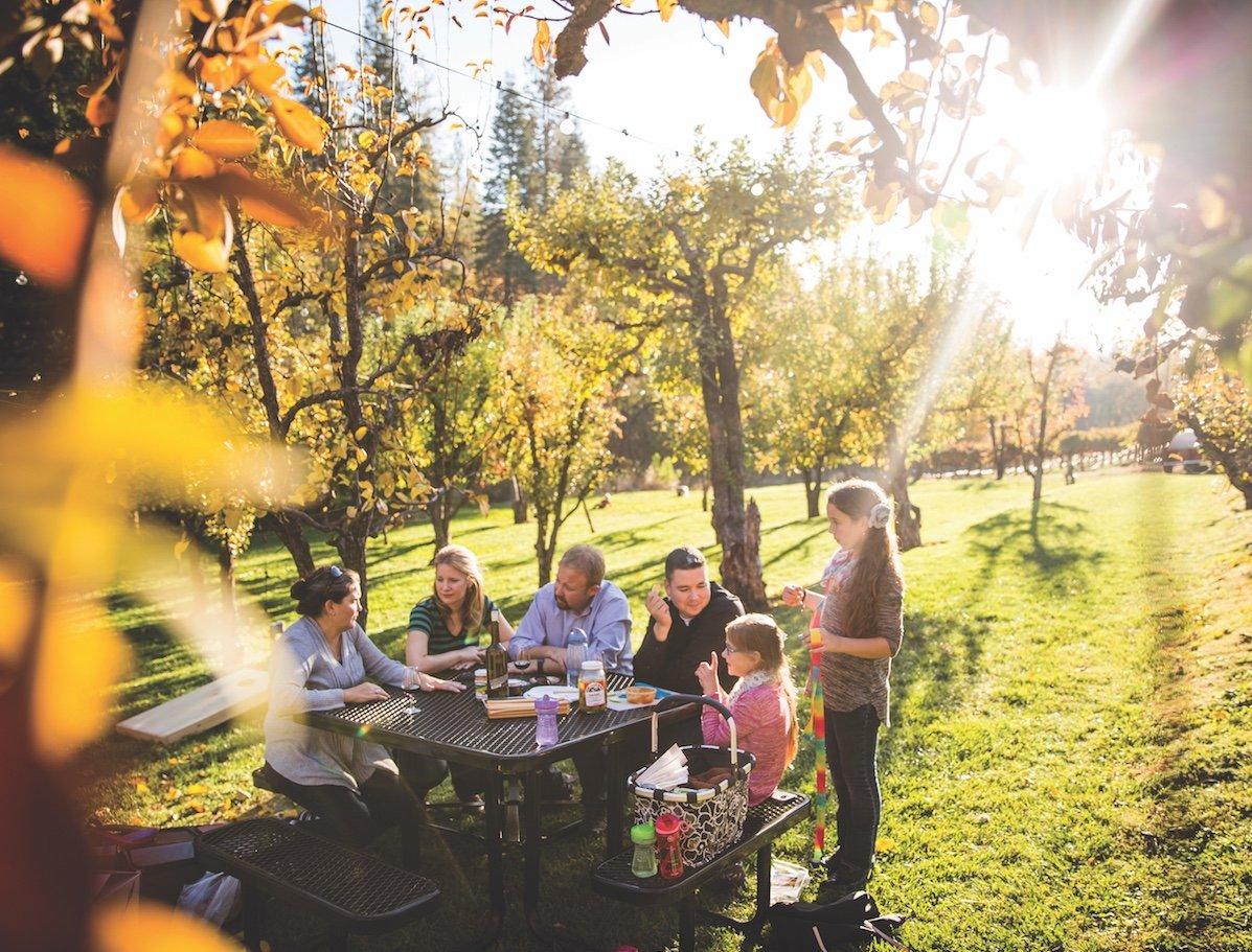 A perfect picnic at Boeger Winery (Photo by Max Whittaker)
