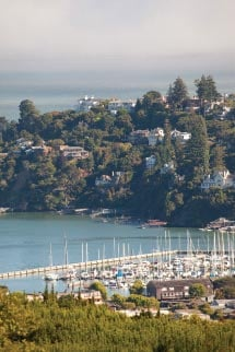 A sweeping view of Tiburon from above