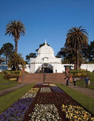Conservatory of Flowers, which boasts more than 1,700 species of flora