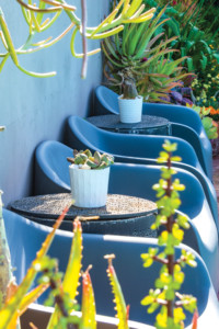 Small pots of haworthia and euphorbia sit atop decorative laundry baskets repurposed as side tables alongside the pool.