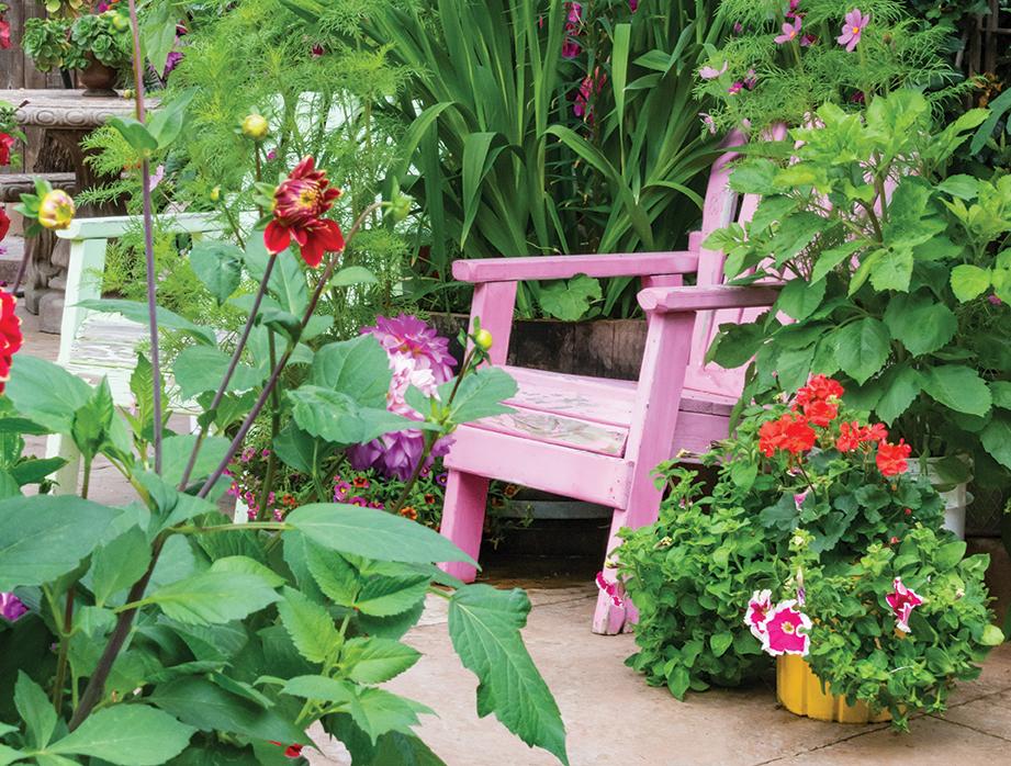 farmer becomes gardener san diego east county