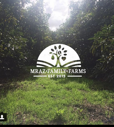 jason mraz family farms february garden