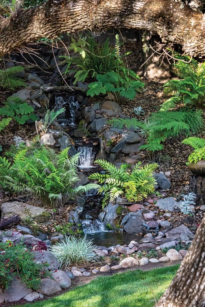 garden motif san diego recirculating waterfall ferns