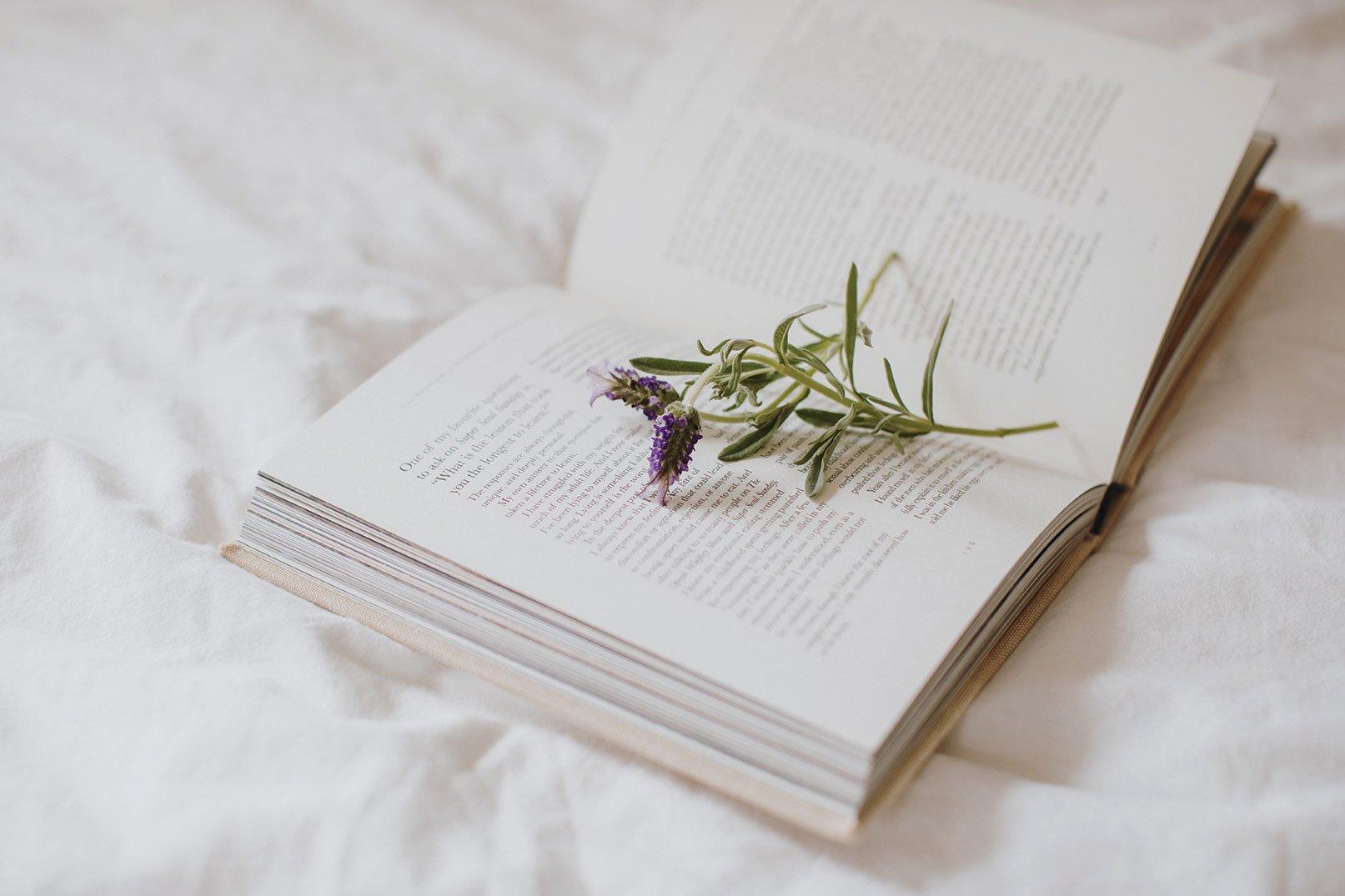 natalie gill native poppy lavender bedtime