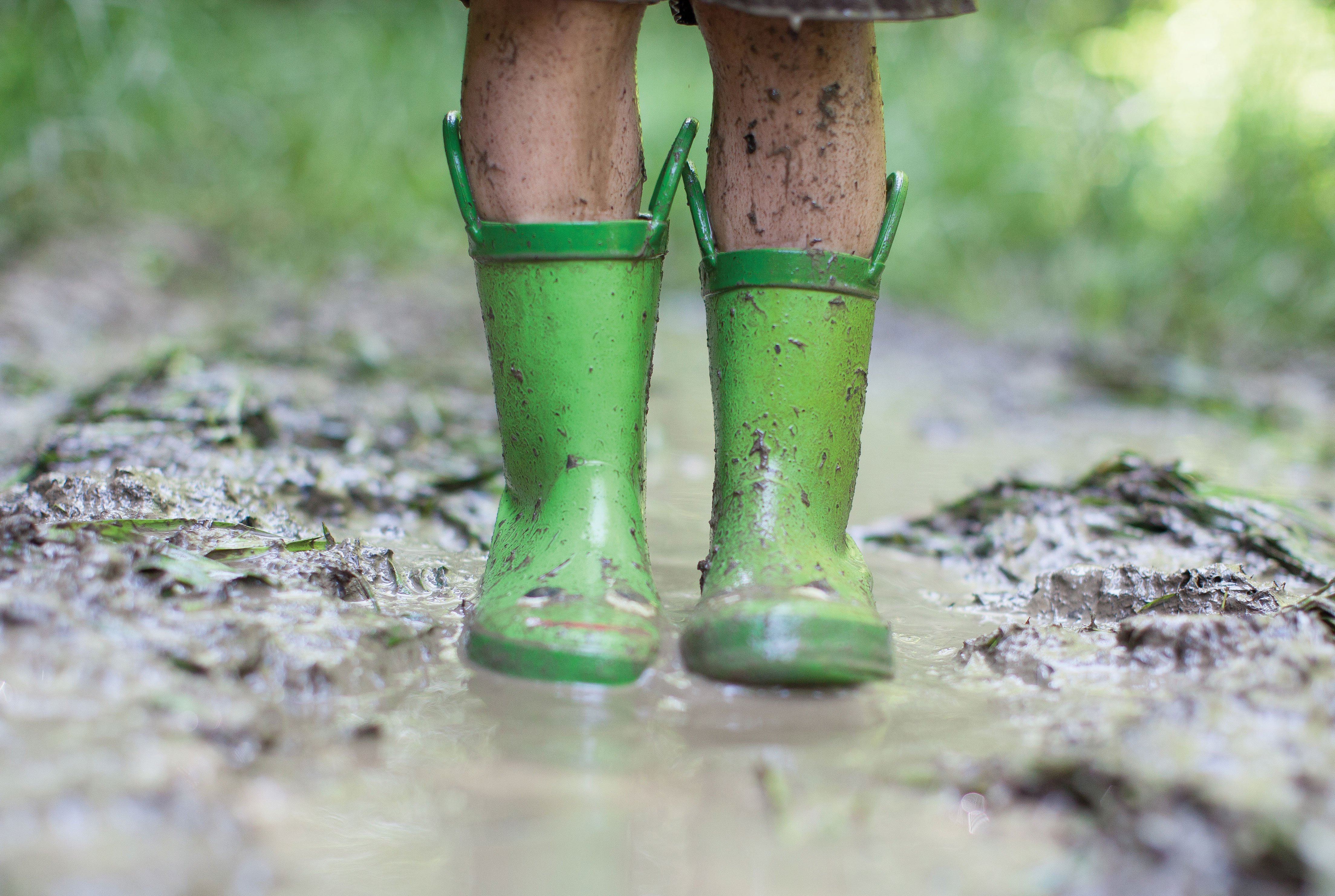 garden rain prep