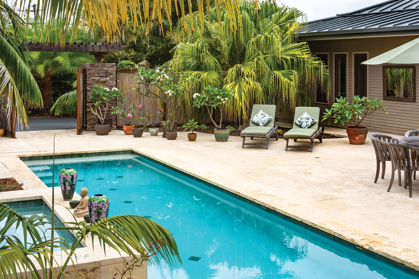 lap pool garden leucadia san diego home garden lifestyles magazine chinese fan palm