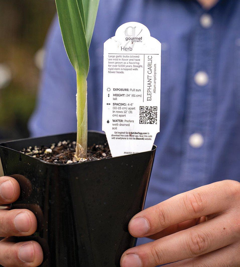 nursery guide plant shopping labels instructions kevin espiritu
