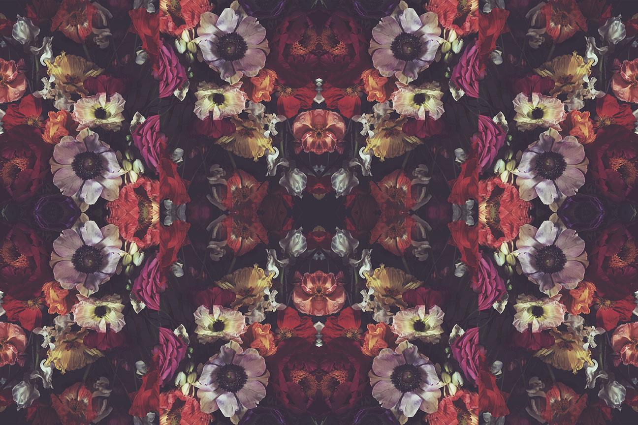 Xanadu wallpaper Ashley Woodson Bailey zodiac design sign scorpio scorpios