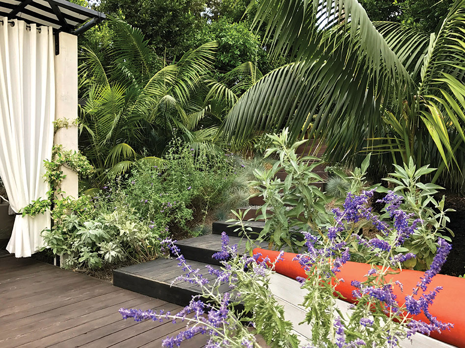 garden with native plants like white sage, cleveland sages, plus a wood deck and plush seating