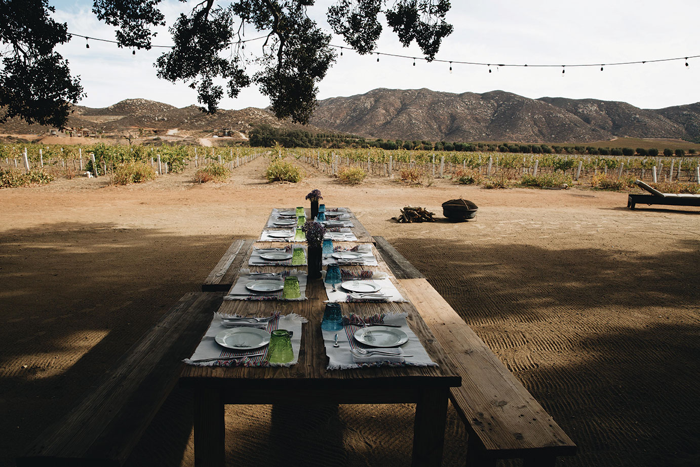 Bruma communal tables organic gardens Valle de Guadalupe mexico baja dining travel