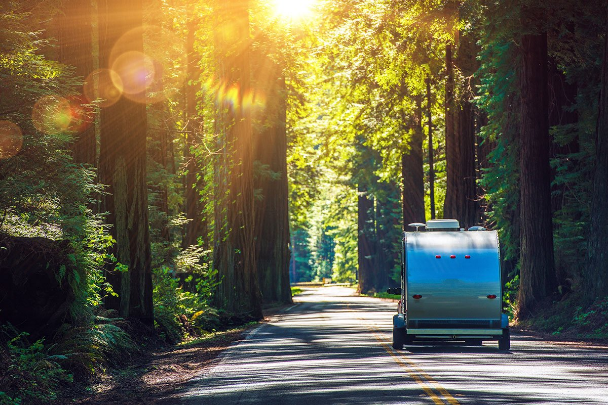 free camping trailer going through redwoods