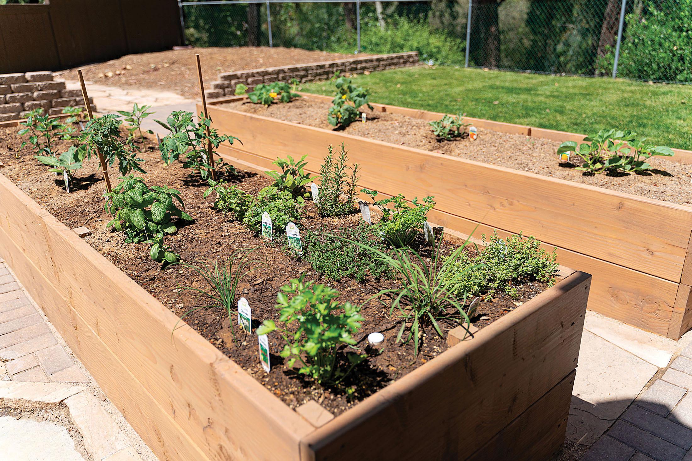 raised douglas fir garden beds kitchen garden