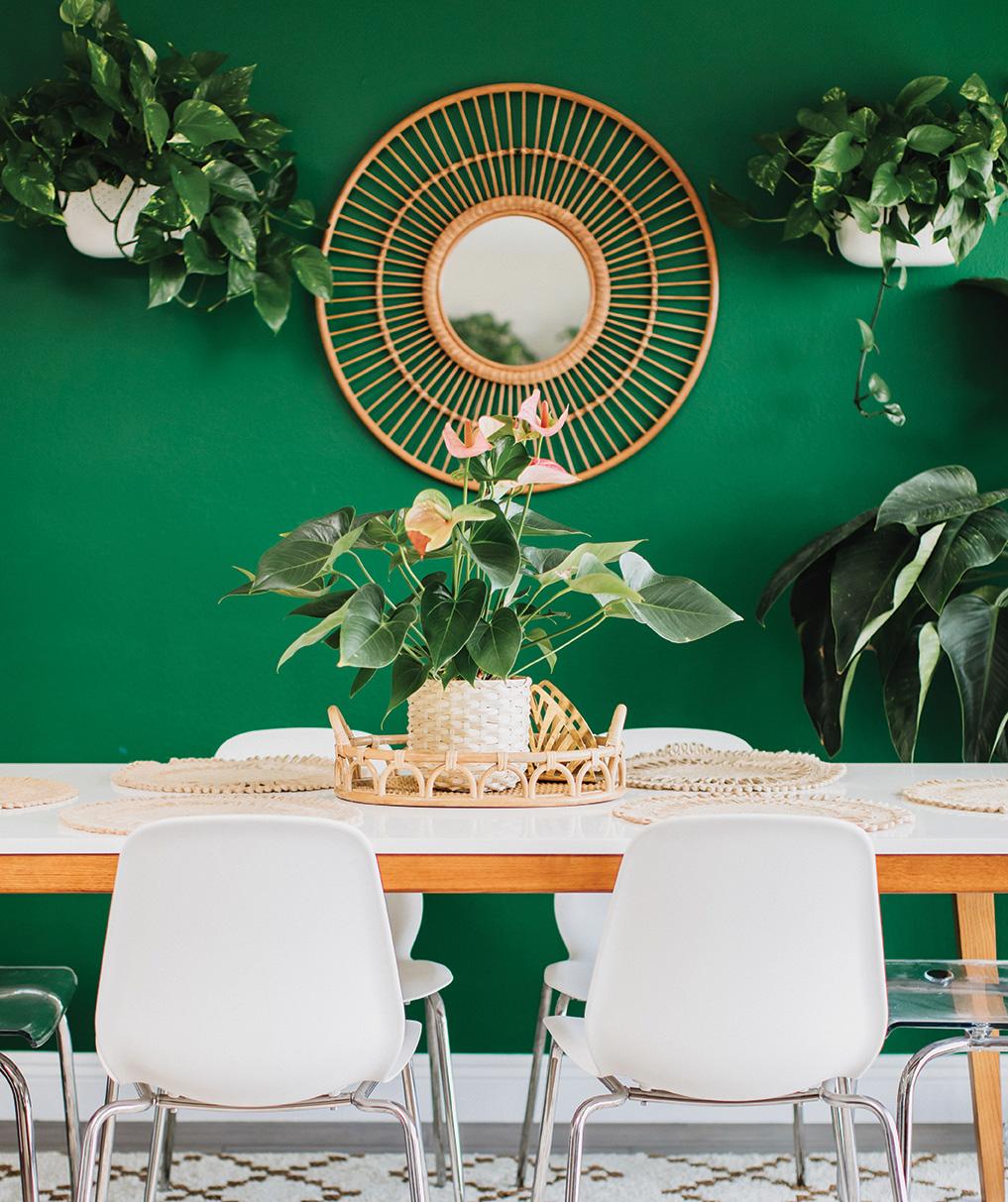 wall ideas decor blank green paint