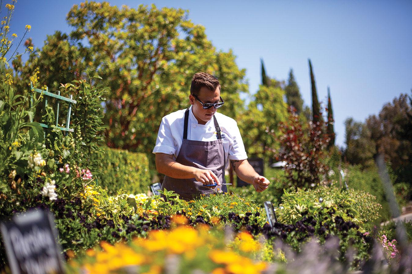 avant rancho bernardo inn chef garden