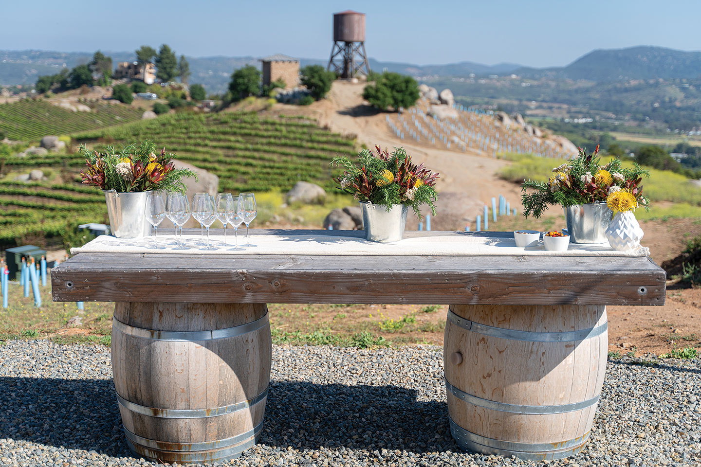 vegan wine pairing outdoor dinner popup jack simon vineyard