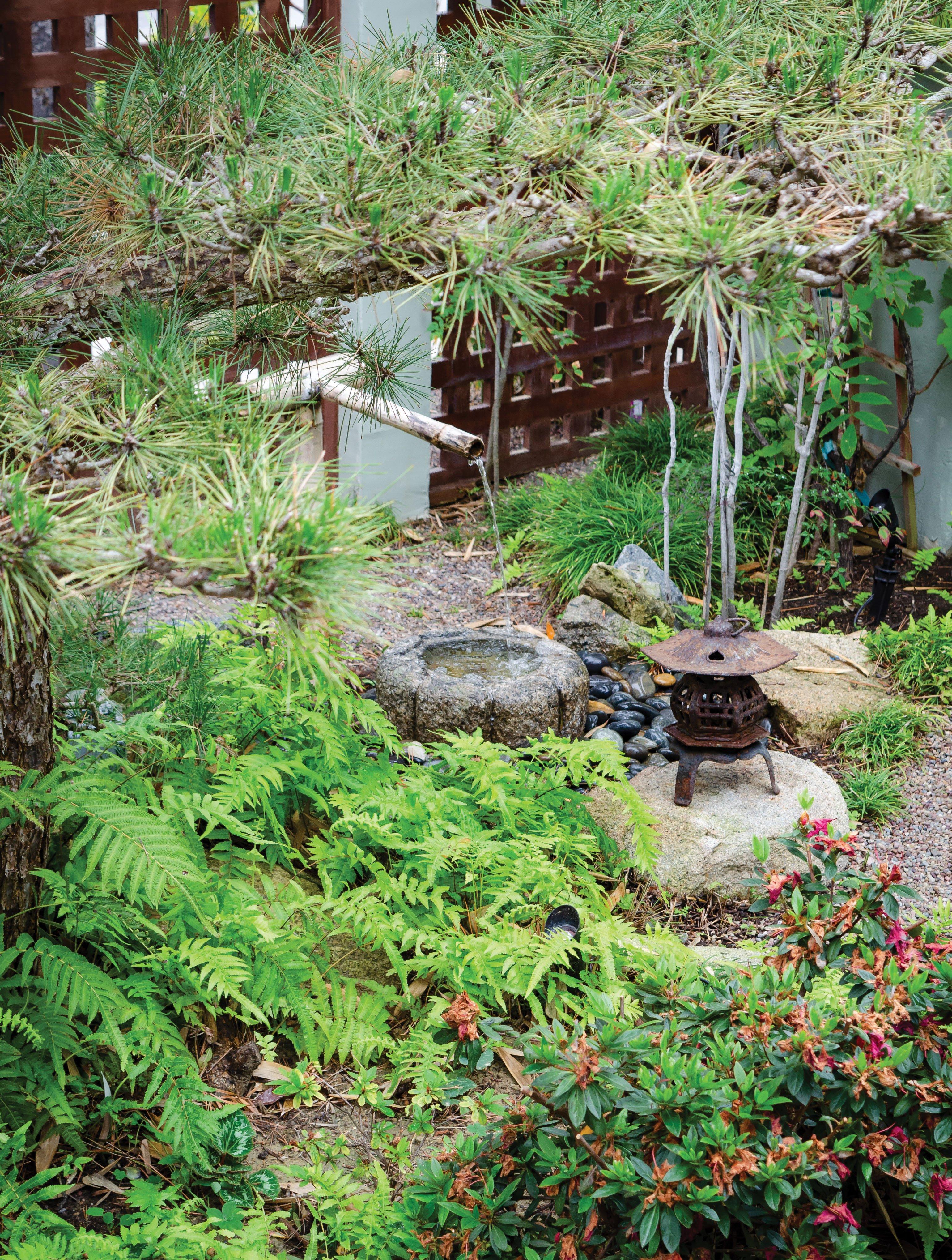 zen landscape san diego japanese garden water feature for tea ceremony