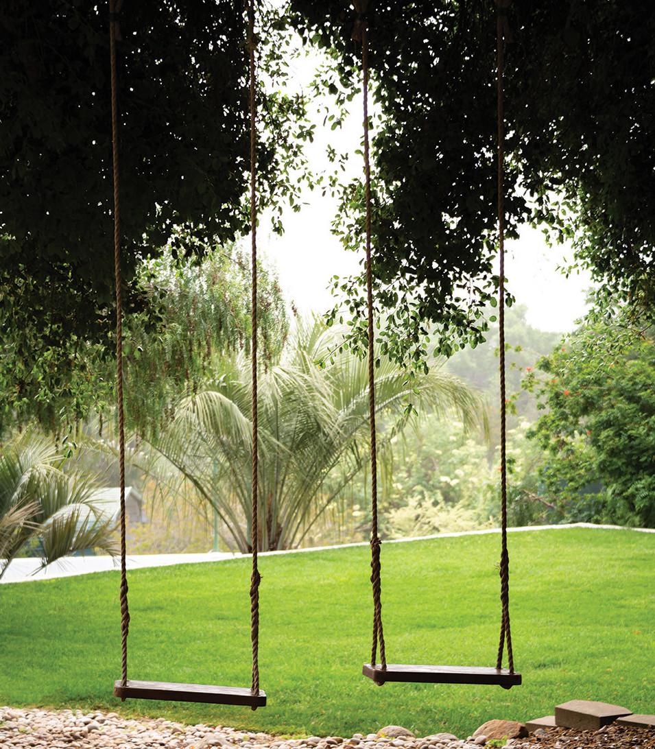 tree swings hidden lake ranch