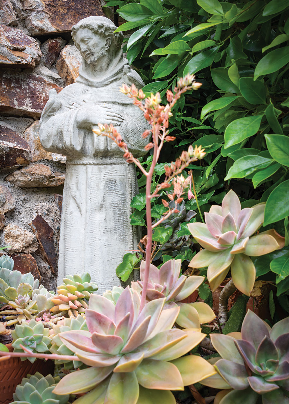 st francis statue point loma garden terraces