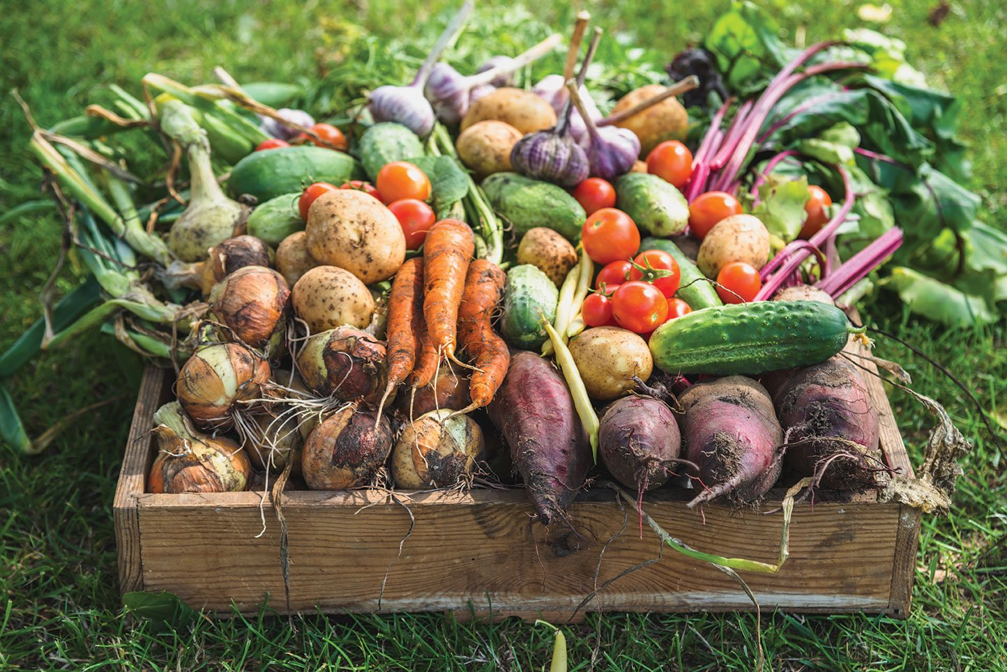 eat what you grow eat your garden vegetables carrots potatoes beets greens tomatoes