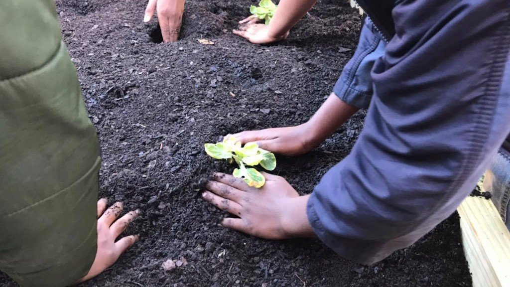 Dougherty County Students Set To Garden Their Own Cafeteria Produce
