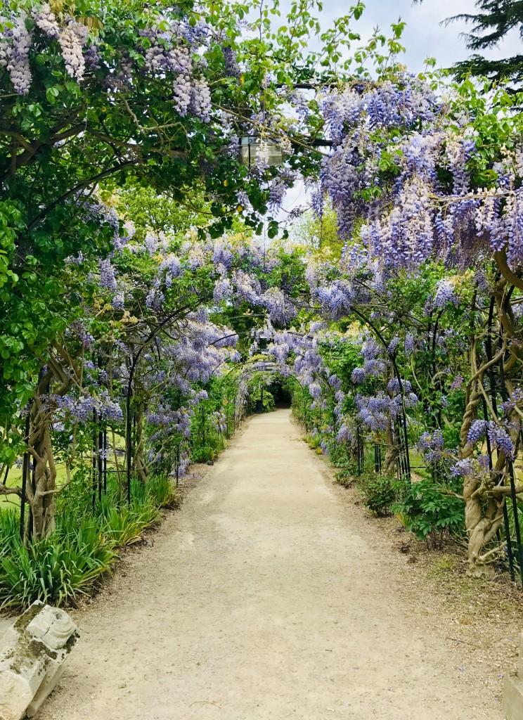 Arbor Garden 002