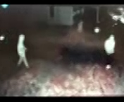 Vehicle Entry Suspects