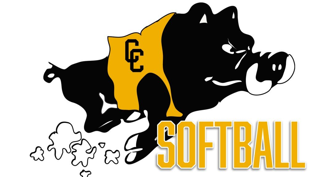 Colquitt County High School Softball