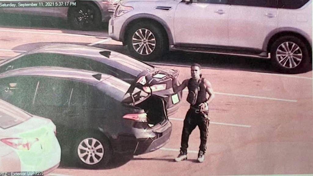 Albany Phone Thief