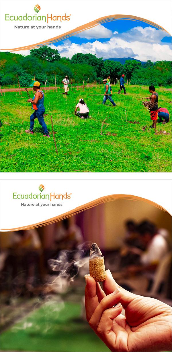 EcuadorianHands PaloSanto