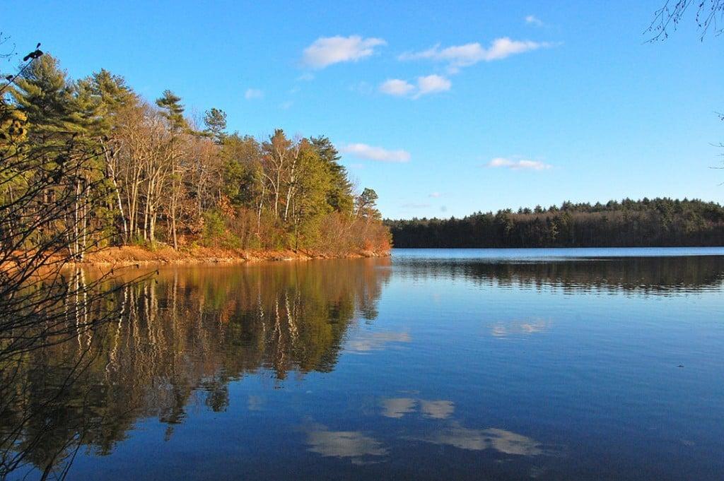 Walden Pond 2010