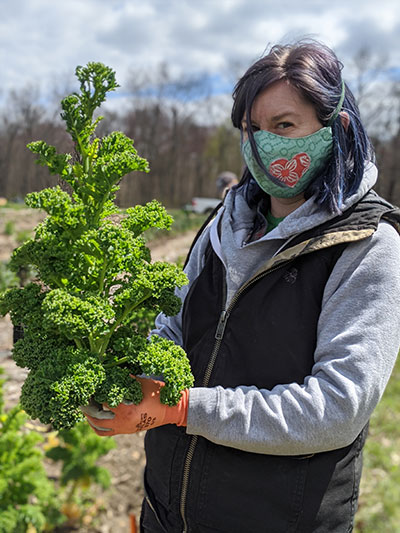 Alyssa-DesRosier-Massaro-Community-Farm-Kale-by-Alanna-Gilbert