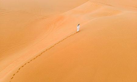 Desert 116721165 S