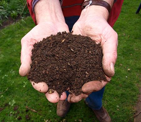 Fresh Compost Pixabay