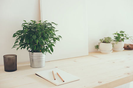 Desk With Plants 62090899 S