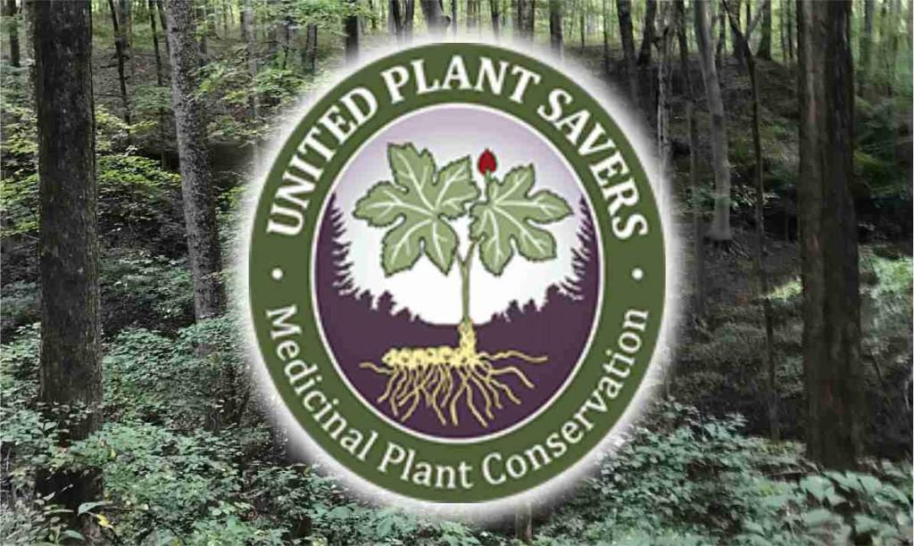 International Herb Symposium Tree Badge Rectangle