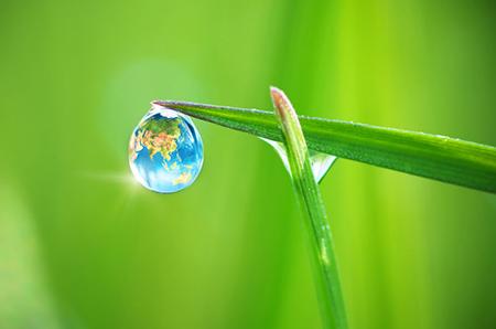Earth Rain Drop Water Blade Of Grass 22525474 S