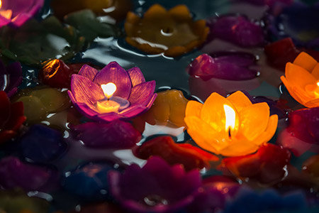 Lotus Candle 69561969 S