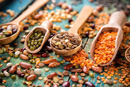 Beans Legumes 81173013 S