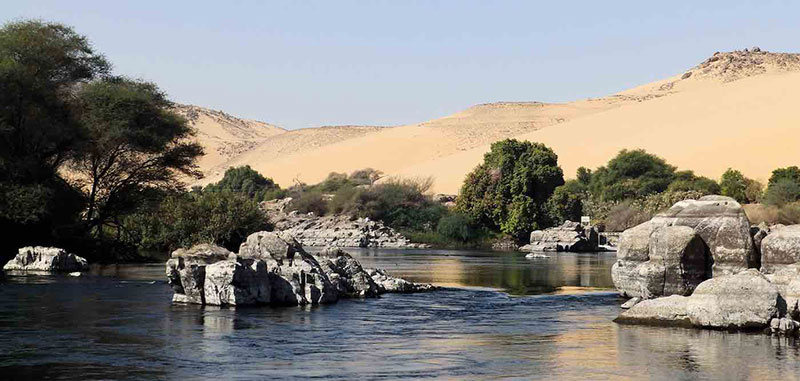 River And Tree Forest In Desert Public Domain Via Pxfuel