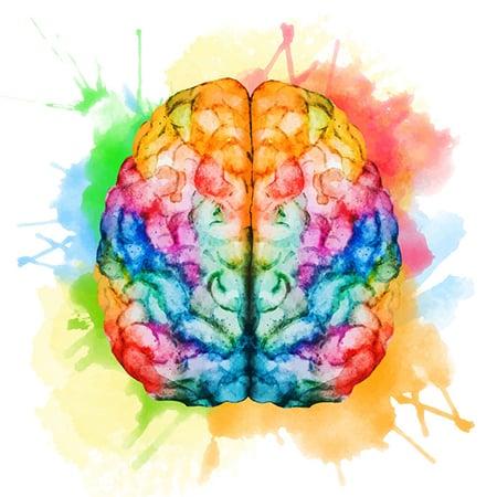 Brain 41907601 S 450