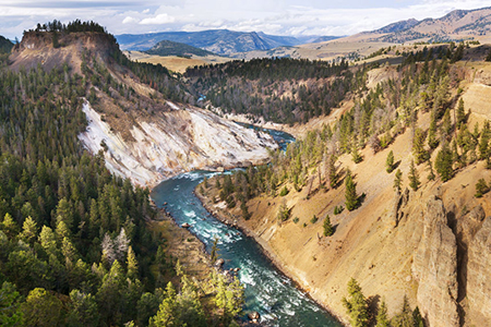 Yellowstone 33341246 S