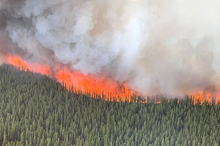 Swan Lake Crown Fire 2019june19