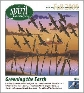 Fall2009cover
