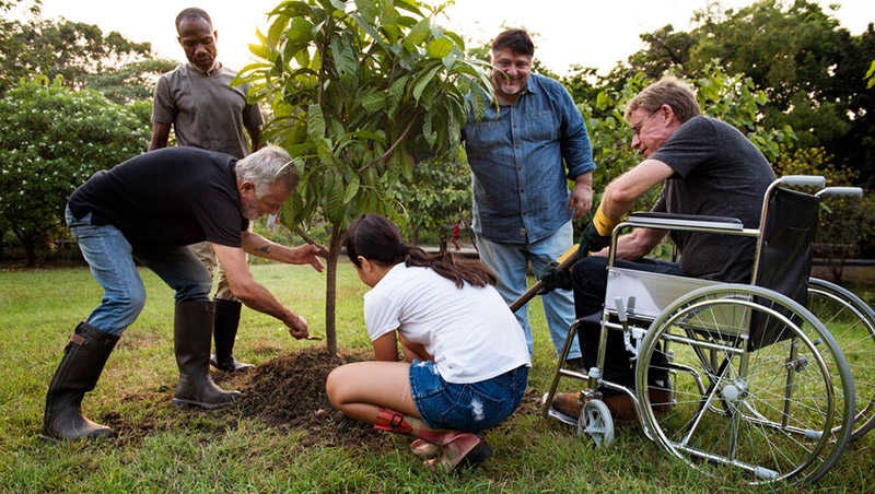 Tree Planting 79316888 S