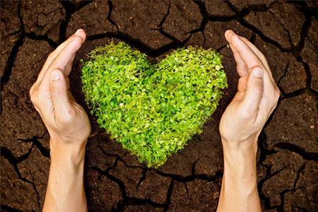 Earth Heart Hands 26265775 S
