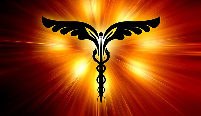 Holistic Health 23661574 Xl