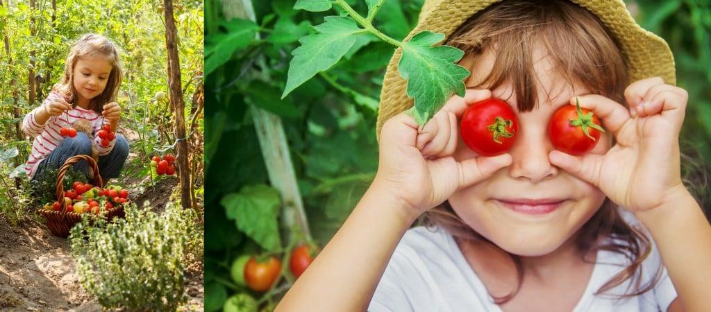 Tomato Girls