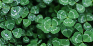 FREE FAMILY ART EXPERIENCES | St. Patrick's Day Céilí Party! @ Lawrence Arts Center | Lawrence | Kansas | United States