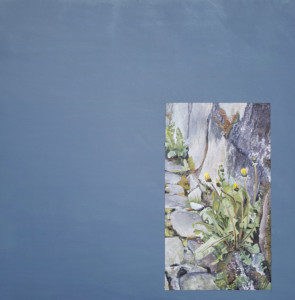 Adam Crowley: Still Life @ Kiosk Gallery | Kansas City | Missouri | United States